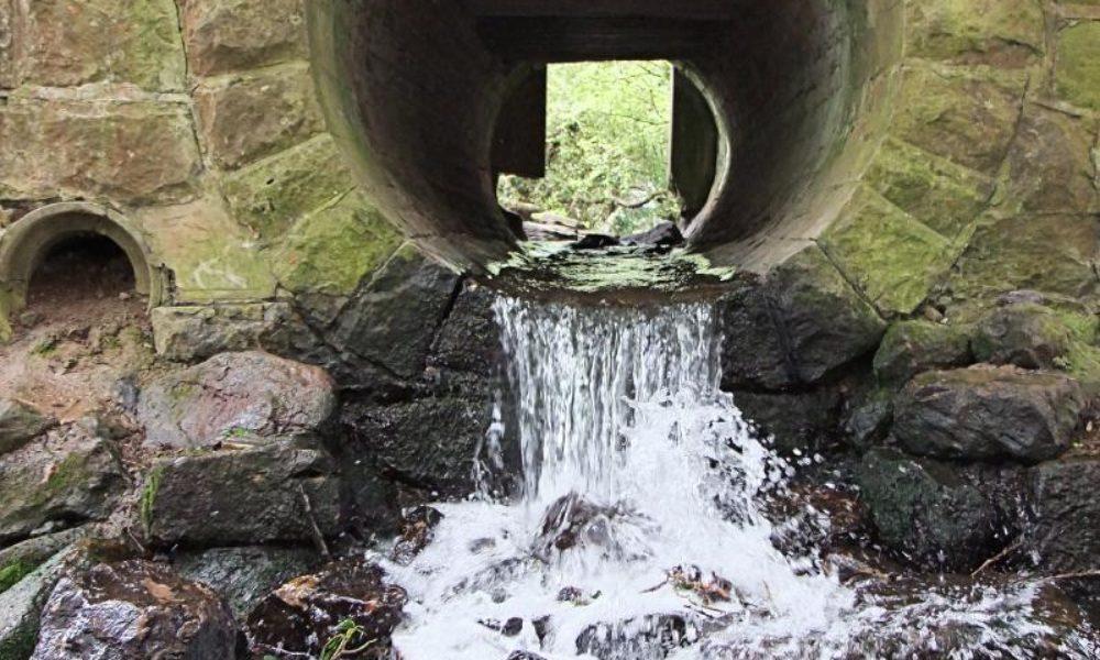 Créer des noues pour le stockage et l'évacuation des eaux pluviales au Pays d'Aix